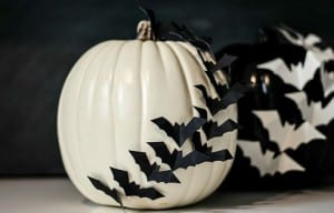 Halloween Kürbis mit Federmäusen