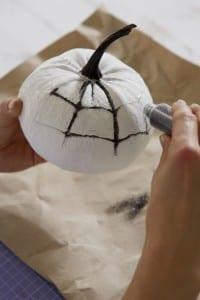 Halloween Kürbis mit Spinennetz