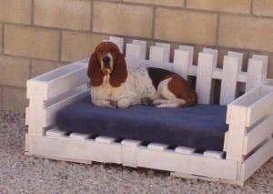 Palettenbett für den Hund