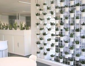 Wand mit haengenden Blumentoepfe