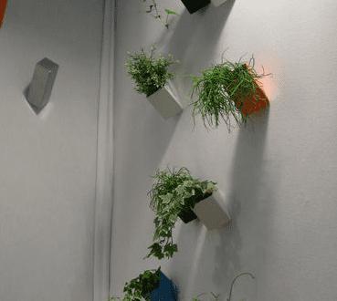 Moderne Blumentöpfe moderne blumentöpfe als wanddekoration freshouse