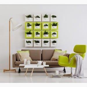 frische Wanddekoration mit Pflanzen in grün