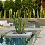 moderne terrassengestaltung mit natursteinplatten und kakteengarten