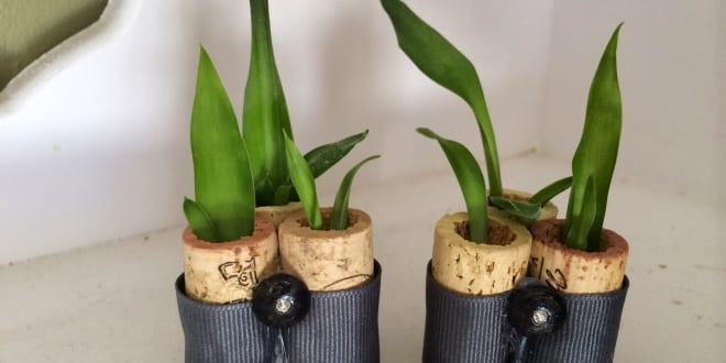 deko selber machen korken planters freshouse. Black Bedroom Furniture Sets. Home Design Ideas