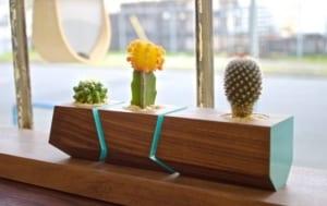 fenster dekorieren mit boxcar-blumenkürbel aus nussbaumholz