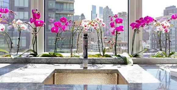 fensterbank dekorieren mit orchideen - fresHouse