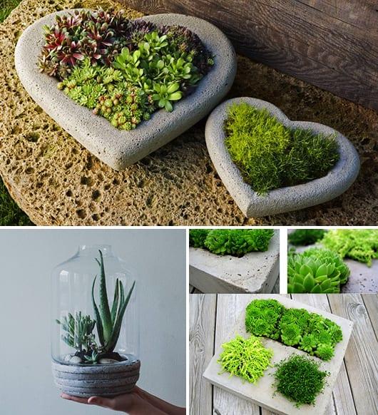 Diy terrarium basteln mit beton freshouse - Gartendeko mit kindern basteln ...