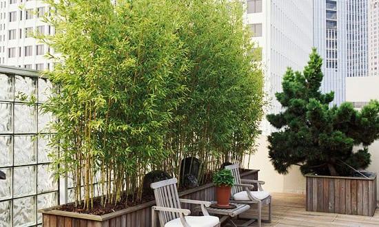 dachterrasse hochbett bepflanzen freshouse. Black Bedroom Furniture Sets. Home Design Ideas
