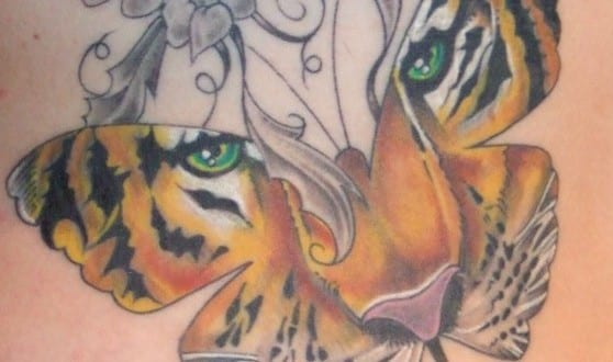 Coolles Schmetterling Tattoo Mit Tiger