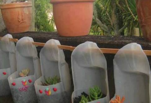 plastikflaschen bastelidee für DIY garten