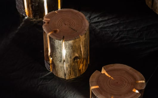 moderne-Baumstumpf-lampen-für-coole-raumgestaltung
