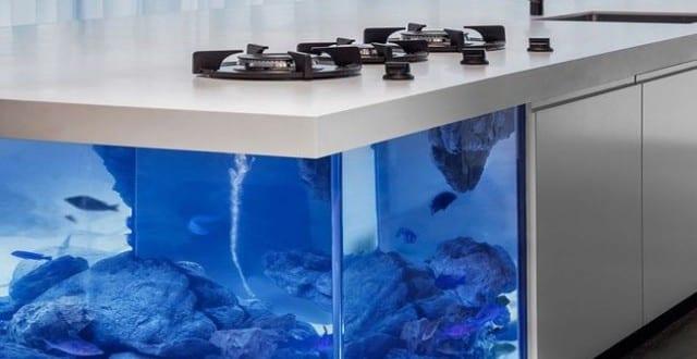 moderne Kochinsel als einrichtungsidee für weiße Küche mit Aquarium ...
