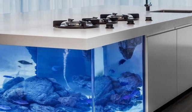 moderne kochinsel als einrichtungsidee f r wei e k che mit aquarium freshouse. Black Bedroom Furniture Sets. Home Design Ideas