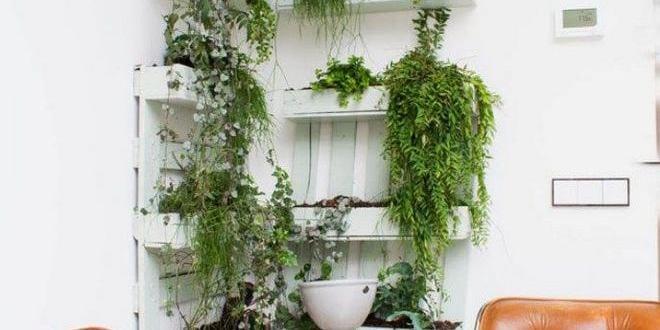 moderne moebel aus paletten bauen als kreative einrichtung und diy wanddekoration mit pflanzen. Black Bedroom Furniture Sets. Home Design Ideas
