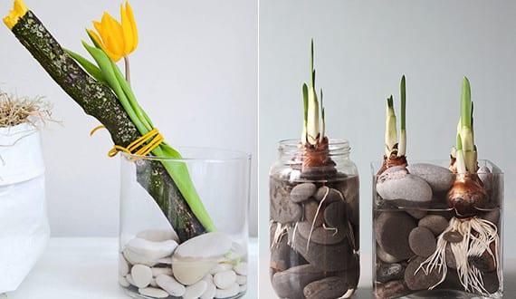 Gestalten Sie wunderschöne Frühlingsdeko mit Frühlingsblumen