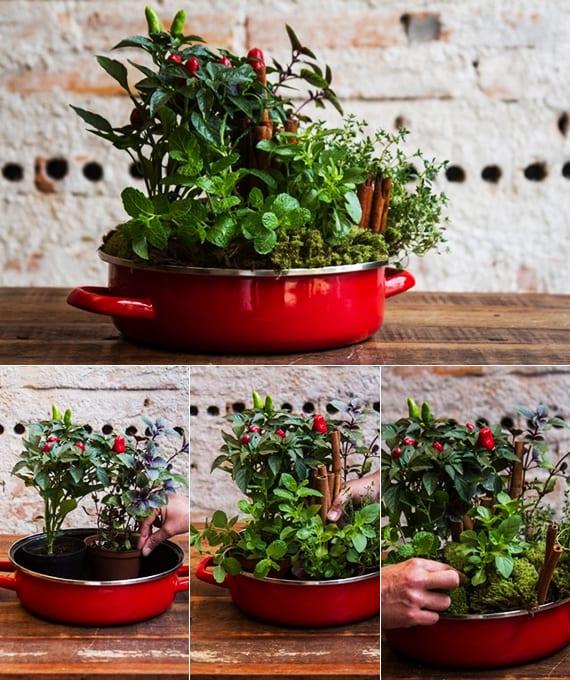 Kräutergarten Küche mein schöner kräutergarten in der küche kräutergarten anlegen und gartenkräuter in kräutertopf