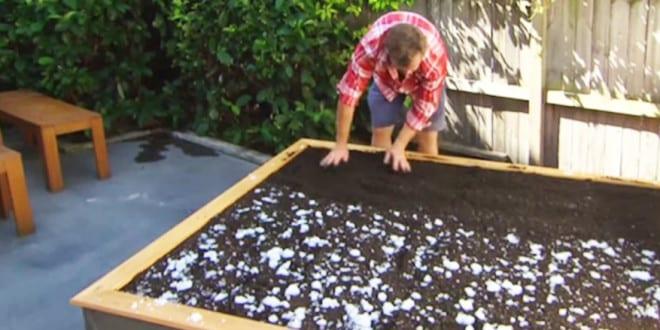 Diy gras bett aus paletten im garten anlegen f r originelle gartengestaltung freshouse - Garten ohne gras ...