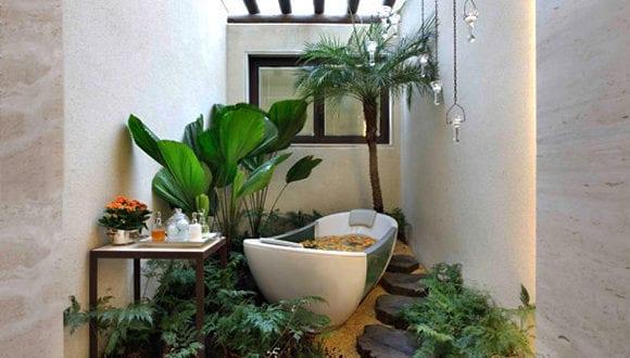 Eine Entspannende Badezimmergestaltung Mit Pflanzen Furs Bad Freshouse