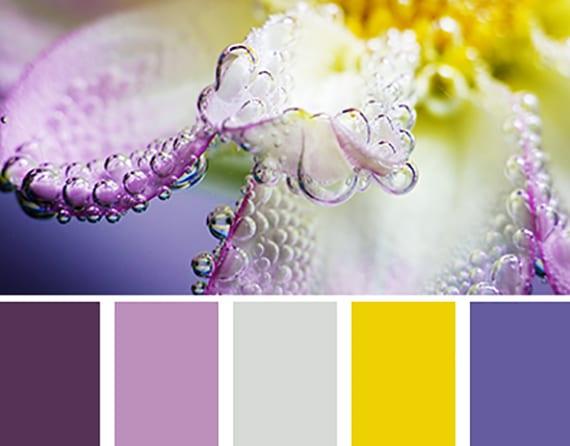 Farbkombinationen und wandfarbe ideen mit farbe lila und gelb freshouse - Farbkombinationen wandfarbe ...