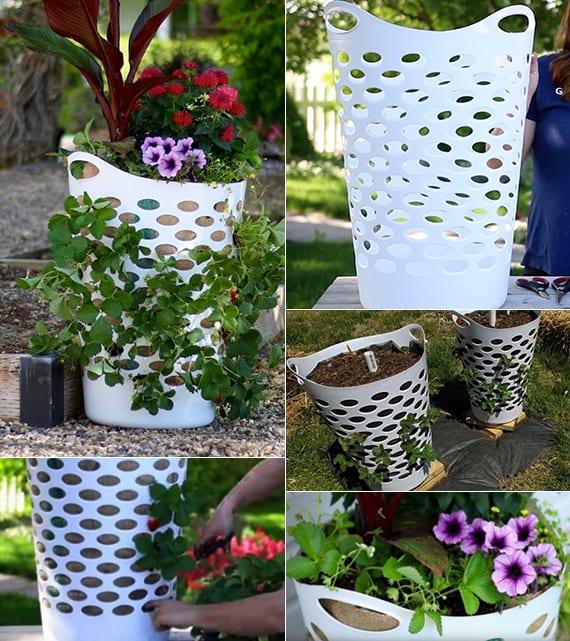 erdbeeren pflanzen in diy containers aus w schek rben freshouse. Black Bedroom Furniture Sets. Home Design Ideas