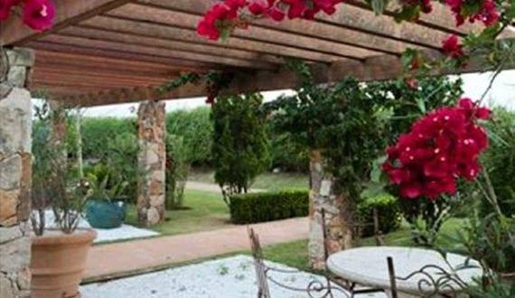Mediterane Gartengestaltung mediterrane gartengestaltung mit kletterpflanzen für