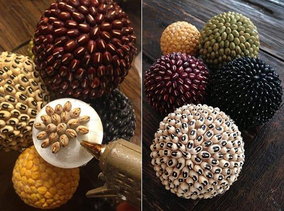 Dekorative b lle aus bohnen im herbst basteln f r kreative for Herbstbilder zum basteln