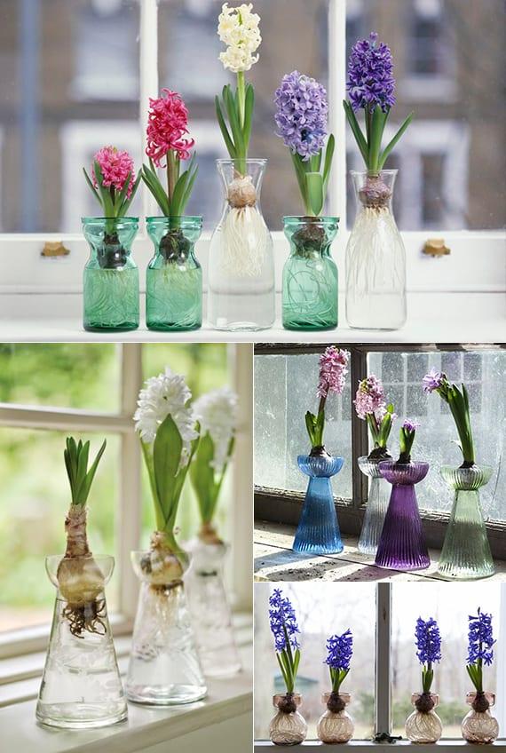 coole blumendeko mit Hyazinthen in kleinen vasen aus farbigem glas