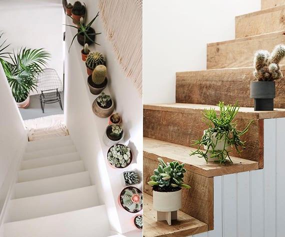 coole treppendeko idee mit sukkulenten, innentreppe weiß mit holzstufen