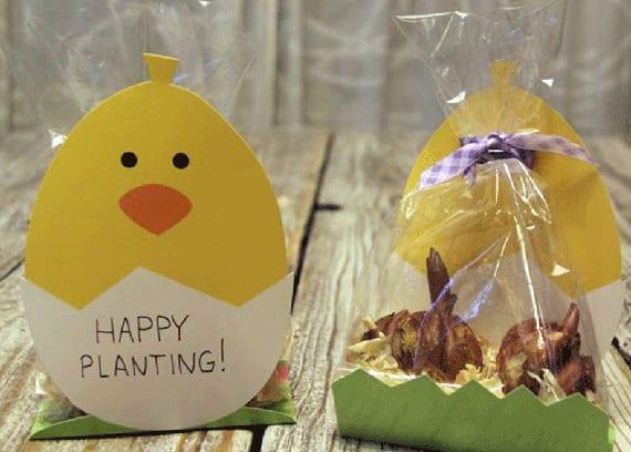 diy küken-geschenkverpackung basteln für blumenzwiebel als geschenkidee zu ostern