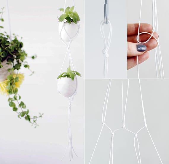 coole hänge-blumendeko mit kleinen pflanzen in eierschalen und blumenampel