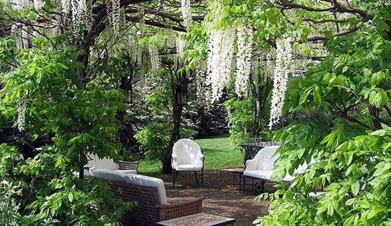 tolle garten ideen f r romantische sitzecken im garten unter pergola aus kletterpflanzen freshouse. Black Bedroom Furniture Sets. Home Design Ideas