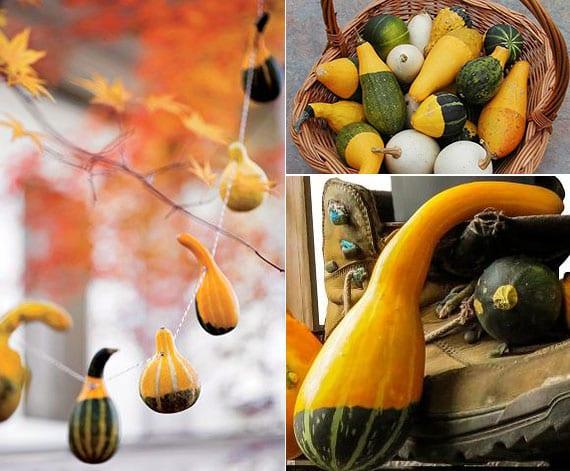 lebendige dekoration für den herbst mit doppelfarbigen zierkürbissen als girlande im garten oder im weidenkorb