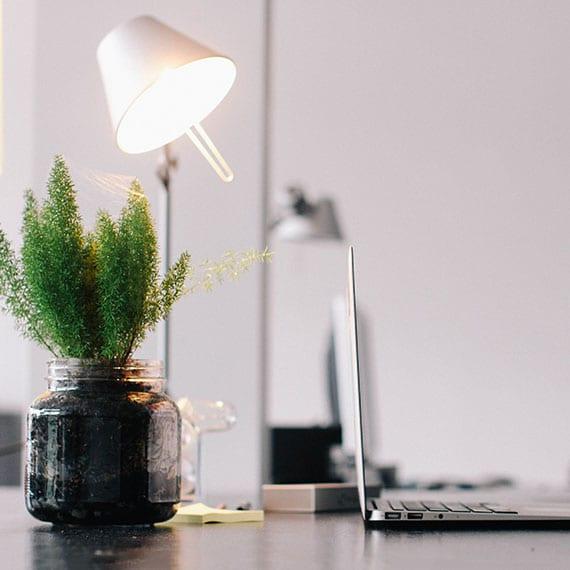 bürotisch dekorieren mit grüner pflanze im glasgefäß, laptop silber und moderner tischlampe weiß