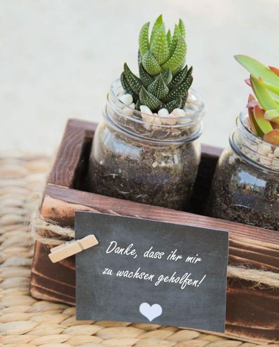 Holzkiste mit Mini-Fettpflanzen im Glas als tolle idee für selbstgemachtes geschenk