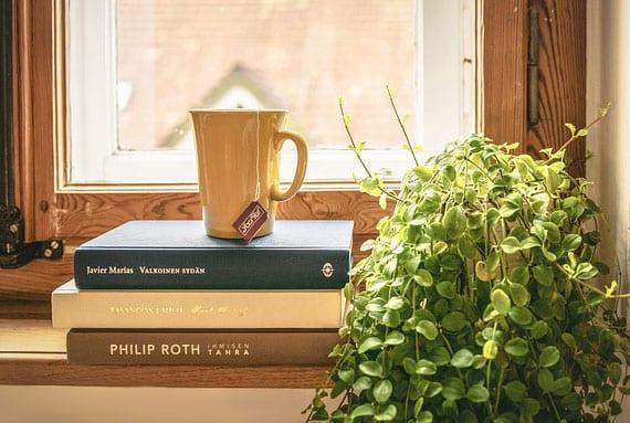 holzfensterbank stilvoll dekorieren mit büchern und grünen hängepflanzen wie der zwergpfeffer