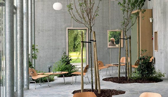 atriumhof-mit-bäumen_tolle-ideen-für-modernem-und-natürlichen-interior-design-mit-pflanzen-im-innenraum