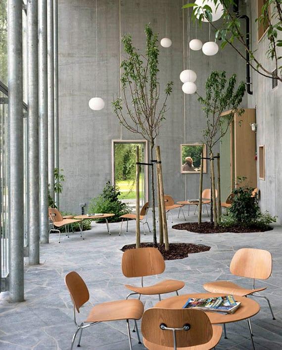 attraktives interieur mit betonwänden, glasfassade, Holztüren und kleinen Garten mit bäumen