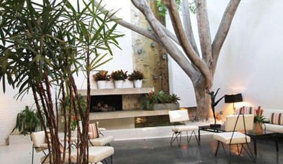 bäume-und-pflanzen-im-innenraum_attraktives-interior-design ...
