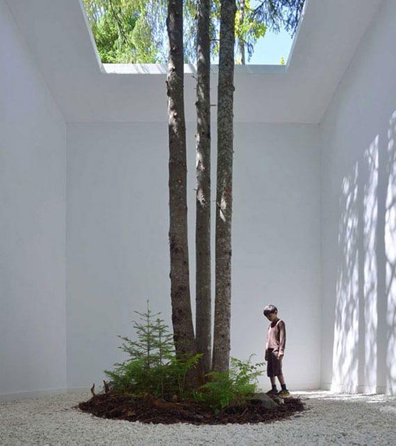 attraktive gartengestaltung mit baum im weißem kiesboden,geschlossen zwischen weißen wänden