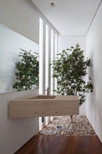 baum-im-badezimmer_natur-ins-haus-bringen-und-mit-dem-interior-design-verbinden