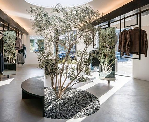 modeladen interieur mit olivenbaum im kiesboden und holzsitzbank in halbkreisform under kreisförmigem oberlicht