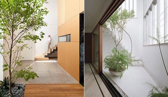 effektvolle-raumgestaltung-mit-bäumen-und-pflanzen-im-eingangsbereich-als-idee-für-ein-modernes-und-natürliches-interior-design