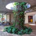 attraktive gestaltung einer überdachten wohnzimmer-terrasse mit großem baum,betondecke, kamin und schiebeglastüren zum garten