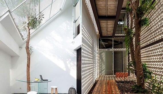 licht,-schatten-und-baum_einzigartige-interior-design-ideen-mit-lebenden-bäumen-im-innenraum