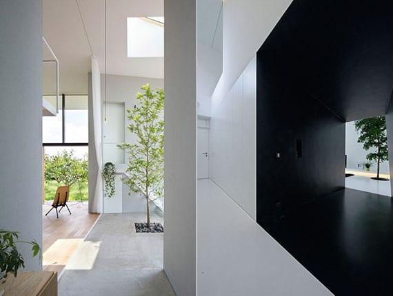 moderne häuser mit minimalistischem interieur in weiß, luftraum mit oberlichter und baum