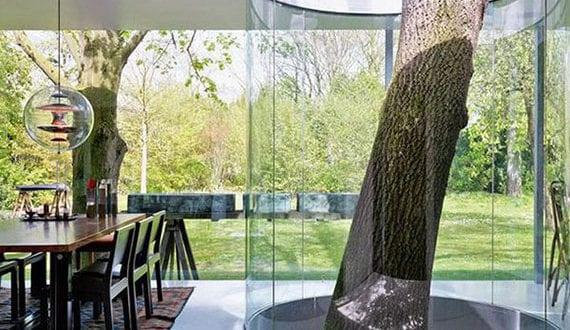 modernes-interior-design-mit-rundem-baum-atrium