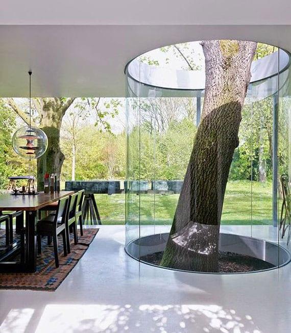 modernes haus mit betondecke, betonboden,glasfassade zum garten und baum im glasatrium in der mitte vom wohn-esszimmer