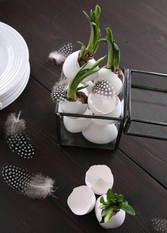 moderne ostern dekoration mit weißen eiern, narzissen in eierschalen und federn in glasbox mit scharzen metallrahmen