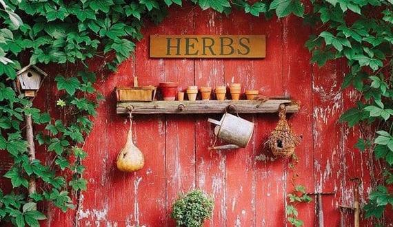 vintage-gartengestaltung-mit-kleinem-kräutergarten