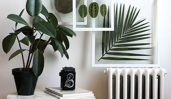 coole-zimmerdeko-ideen-mit-diy-wanddeko-aus-grünen-blättern-in-bilderrahmen